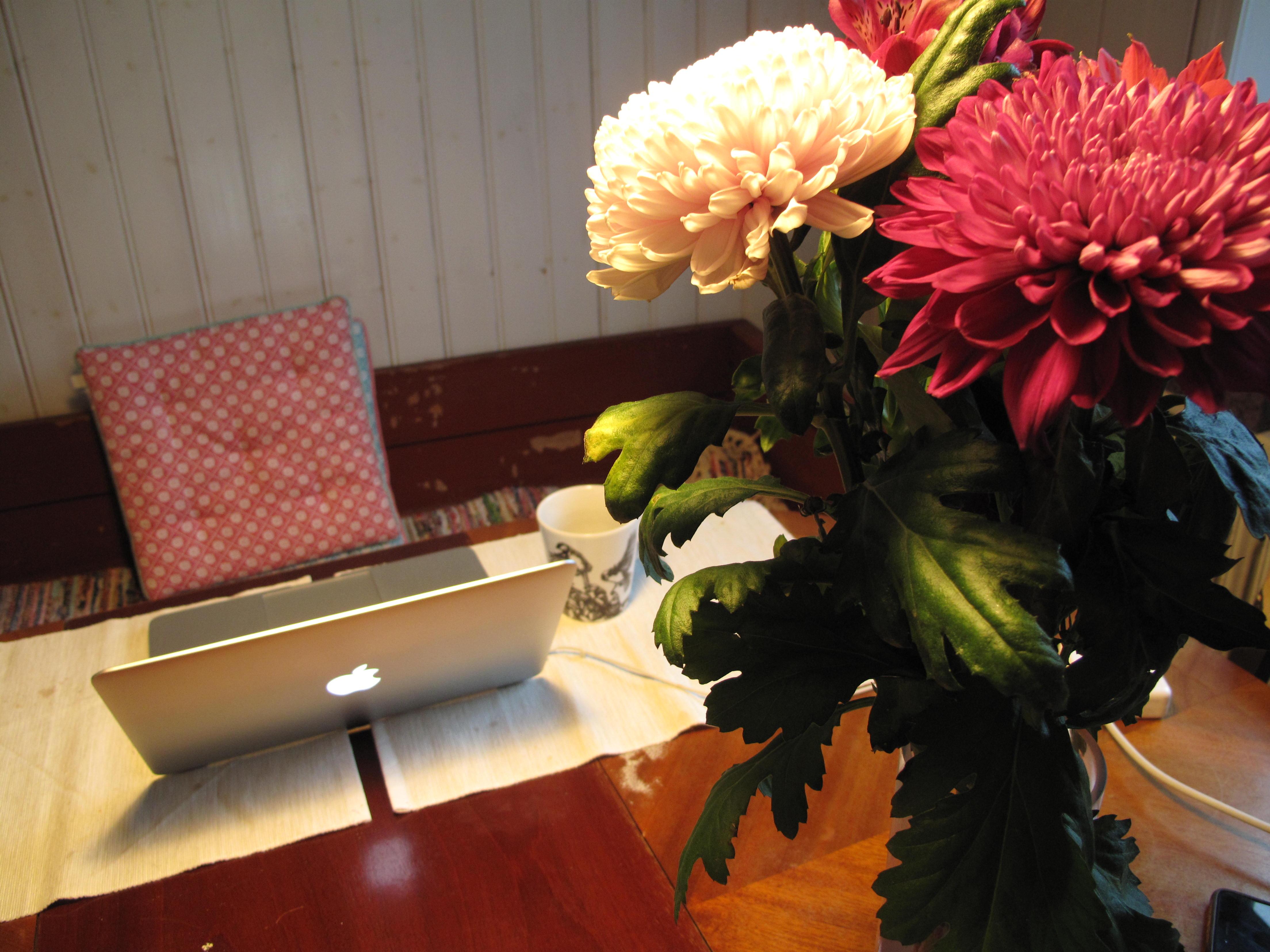 En bukett blommor, en dator och en kökssoffa